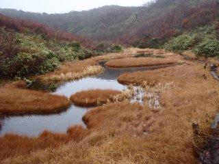 s08池塘3