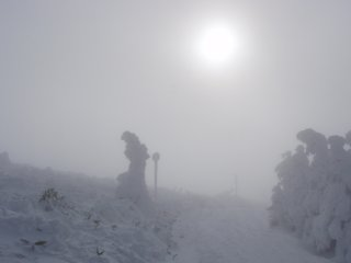 s01朝日の樹氷原コース