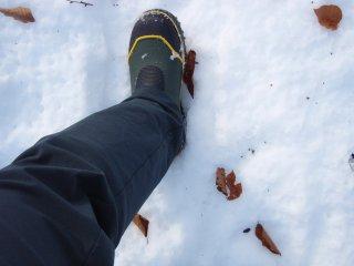 s10雪侵入対策