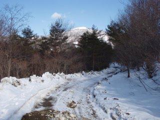 s02泉ヶ岳と林道