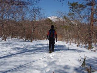 s09泉ヶ岳に向かって