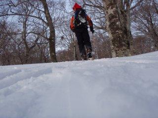 s02快調な登り
