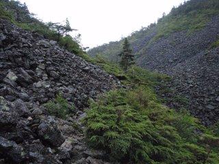 s07仙水峠への道1
