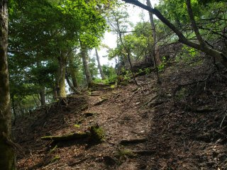 s12大六天登山道1