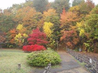 s04ダム湖畔の紅葉