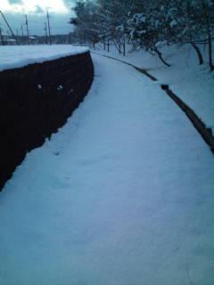 雪中ジョギング