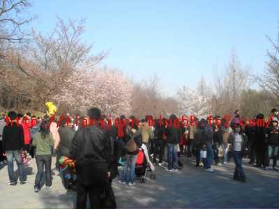玉淵潭公園9