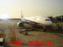 ANA1294便1