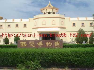 西夏王陵2