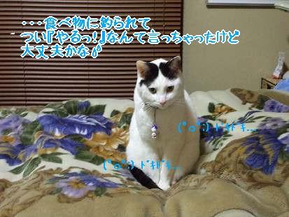 DSCF9697-1.jpg