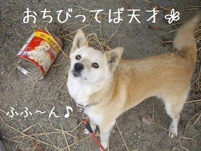 おちび通信7-6