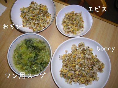 納豆炒飯1