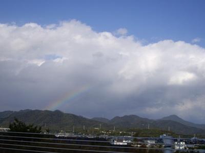 11月の虹