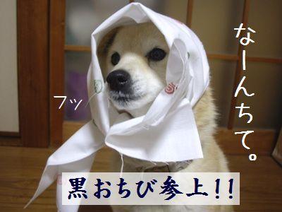 puriちゃん7