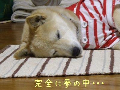 睡眠まで5