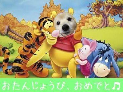 poohおちび