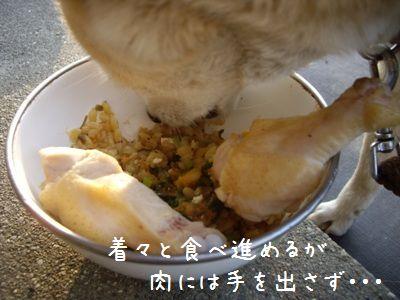 半生肉ご飯3