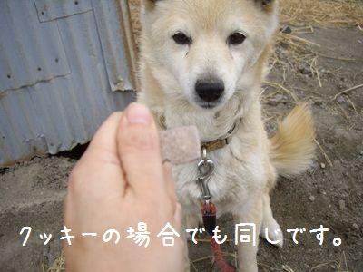 おちび取説6