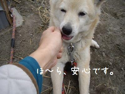 おちび取説7