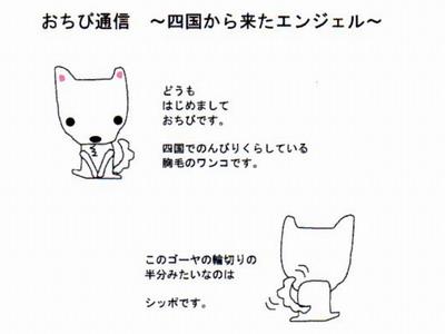 ファンクラブ通信vol1-1
