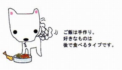 ファンクラブ通信vol1-3