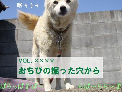 IMGP0136_20090601170448.jpg