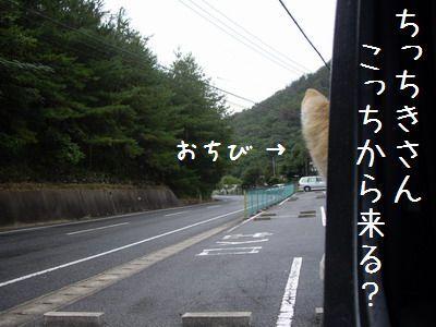 IMGP0474.jpg