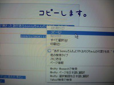 IMGP9301.jpg