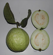 180px-Psidium_guajava_fruit.jpg