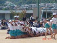 2008東山台小運動会・天王寺動物園 011