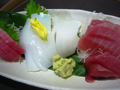 本マ・鉢・アオリイカ1