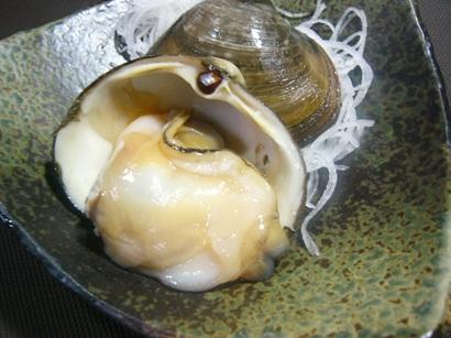 ほっき貝1 (1)小
