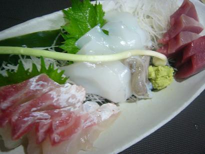 桜鯛・コウイカ・メジ2 (2)