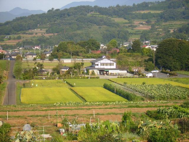 田原盆地49
