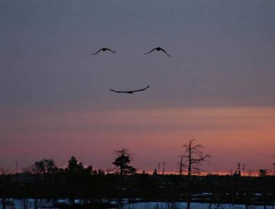 空が笑ってら578