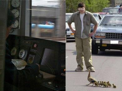 激写!あっ?危ない!渋滞の原因!お笑い画像!完全無修正写真画像!