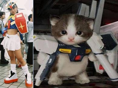 ガンダムコスプレギャルや猫いたり?完全無修正写真画像