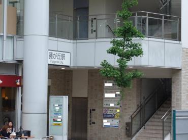 横浜市 藤が丘駅の隣接ビル工事完工写真!です 完全無修正写真!