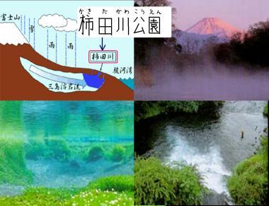 柿田川湧き水の仕組み.完全修正デジカメ写真画像