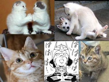 猫たちは可愛いが、んが.完全修正デジカメ写真画像
