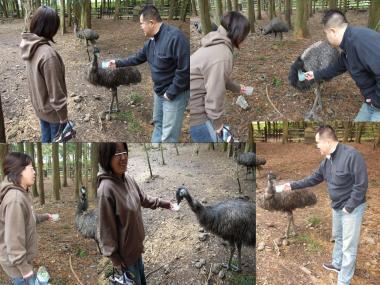 富士花鳥園その4