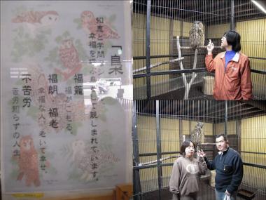 富士花鳥園その最後・・完全修正デジカメ写真画像