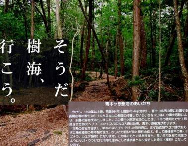 青木ケ原樹海で自殺事件:完全無修正写真画像