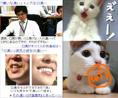 FC2の広告にもあった口臭の原因は歯ミガキにあった:完全無修正画像