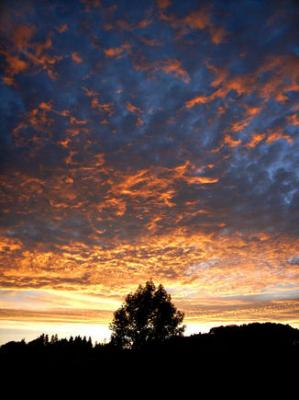 修善寺町現場付近の夕日画像