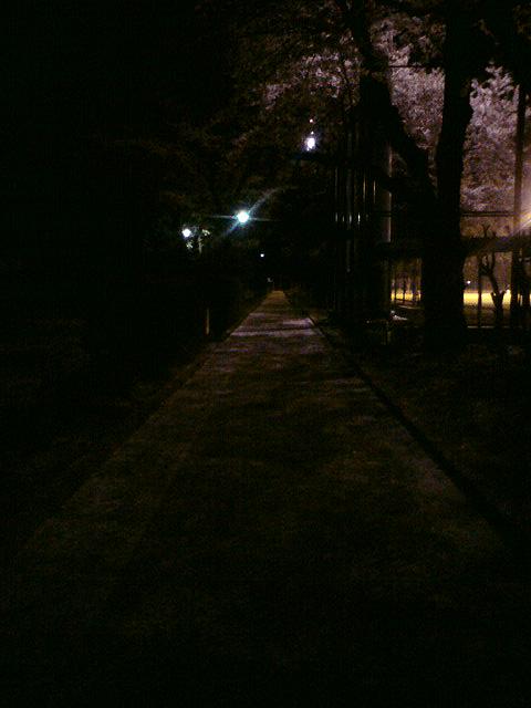 central park09.4