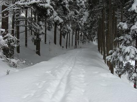 冬山2008 006