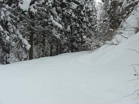 冬山2008 007