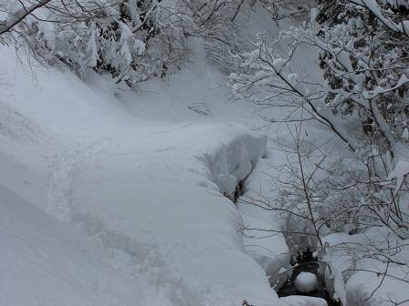 冬山2008 008