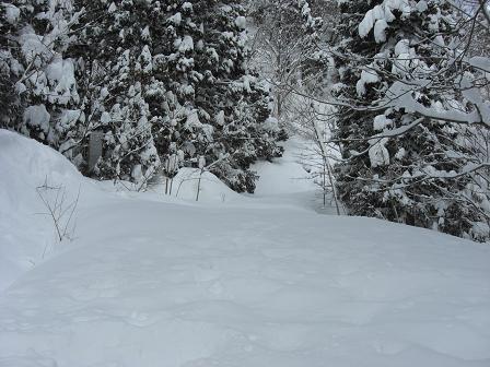 冬山2008 009